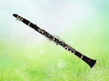 沃克单簧管乐器行